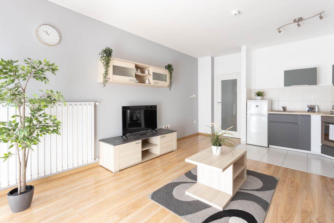 C202 living room